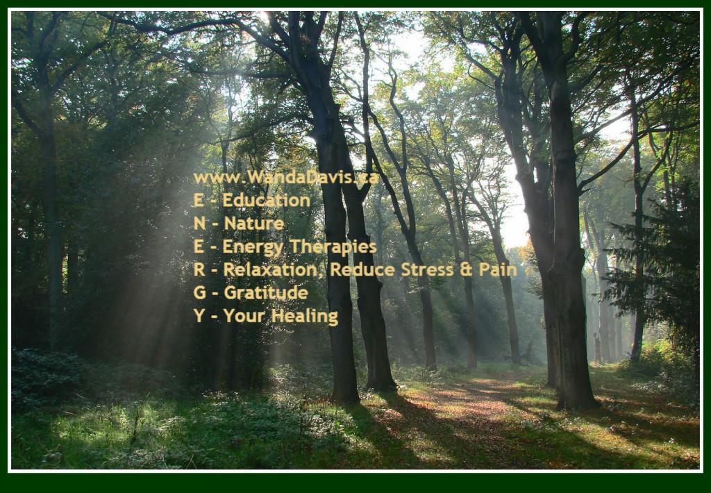 Elements of Healing Energy www.WandaDavis.ca