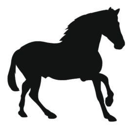 Horse Medicine Spirit Spray