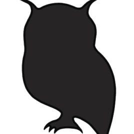 Owl Medicine Spirit Spray