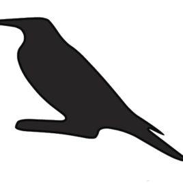 Raven Medicine Spirit Spray